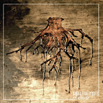 "Amalgamah presenta su doble Cd ""Melow Roots"""