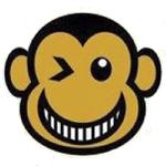 Monkey Festival. Barcelona