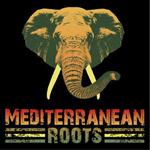 Apoya a la banda Mediterranean Roots para sacar su segundo LP