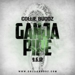 Collie Buddz «Ganja Pipe»
