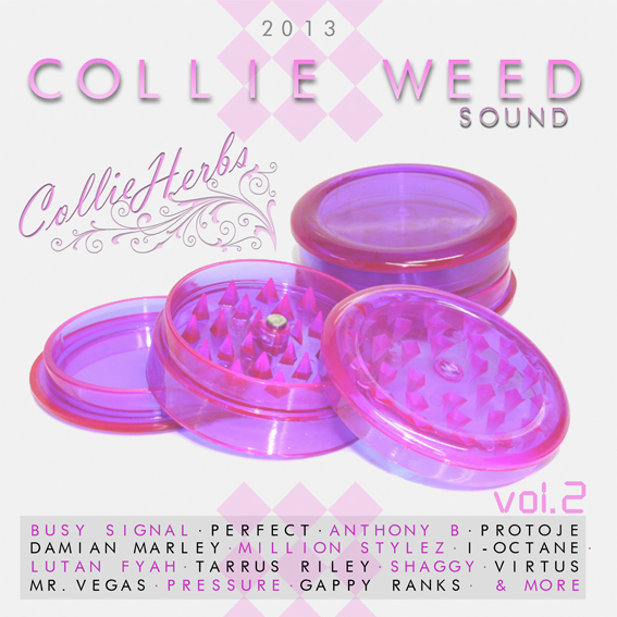 collie weed sound front