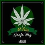 Raggattack se une con U-Rie en la producción de este «Ganja Way»