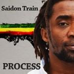 saidontrain-process