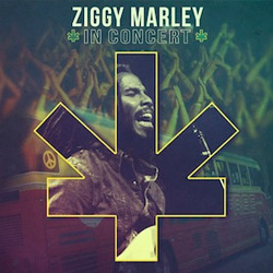 ziggy marley-grammy-2013