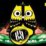 reggaeboa-logo