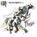 fluye-album-mediterranean-roots