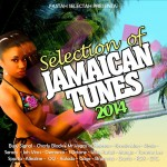 "MIX ACTUAL #177: FASTAH SELECTAH ""Selection Of Jamaican Tunes 2014"""