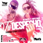 Cinnamon Quality Presenta: Gs Kartel Ft. Buffleman - Tu Despecho (Explicit RMX)