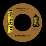 "Greenville Records presenta ""Slender/Boosfight"" el 2º single de Python Dojo"