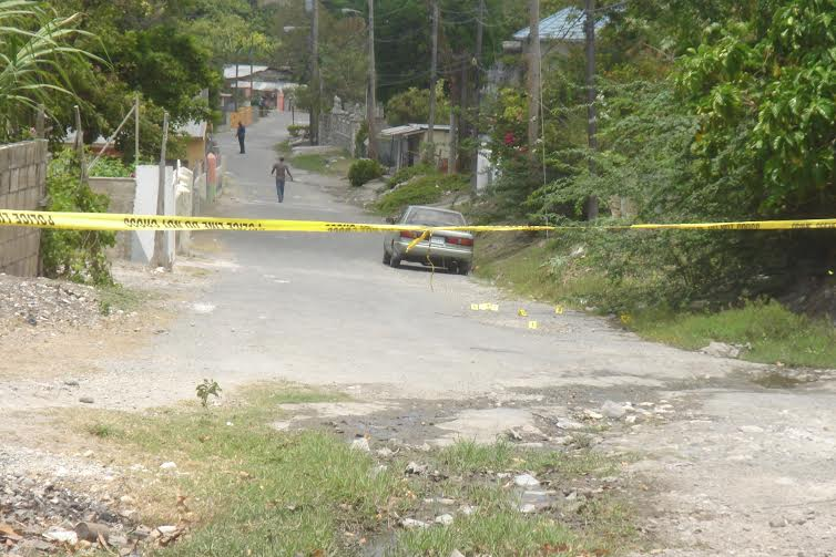 siervo jamaica