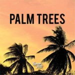 tasman-jude-palm-trees-single
