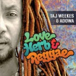 love-herb-reggae-e1454612627406