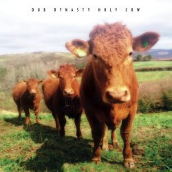BCholy-cow-front