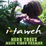 I-Taweh defiende la planta en «Herb Treez»