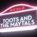 Avance de la videoentrevista en exclusiva a Toots & The Maytals